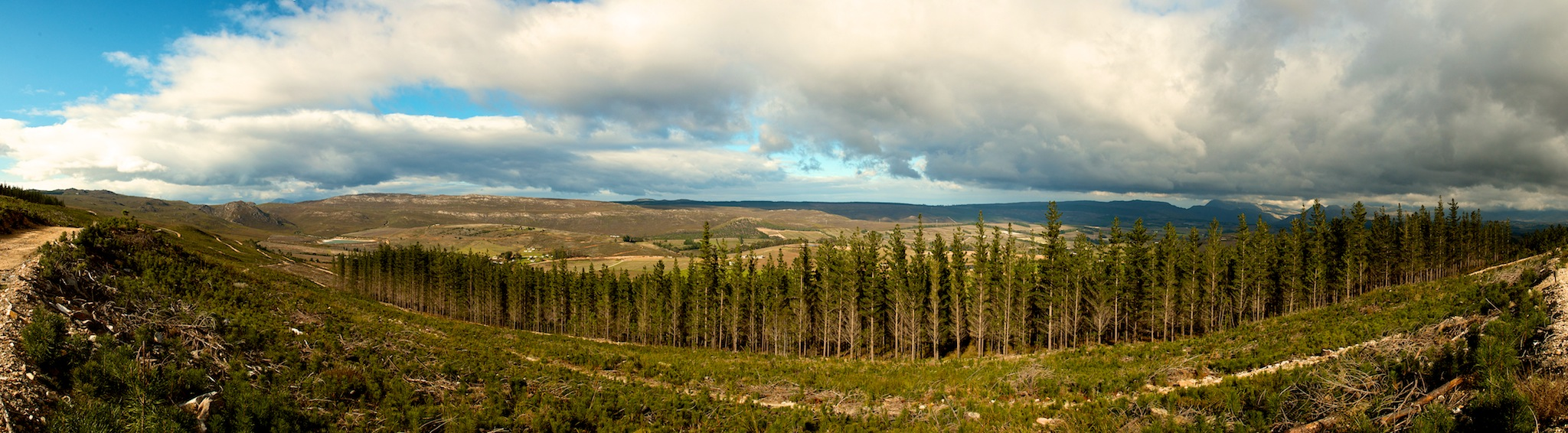 GreenMtnScout_pano1