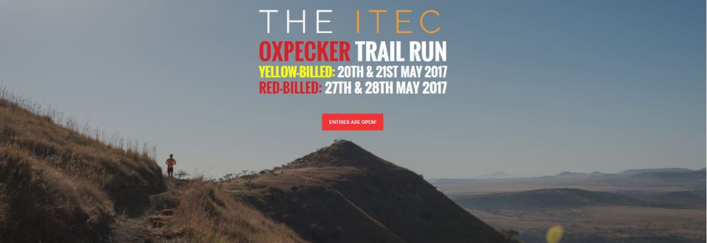 oxpecker trail run